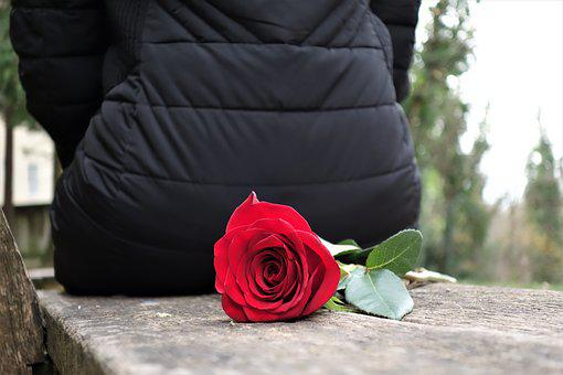 Girl With Red Rose, Love, Waiting, Dreaming, Romantic