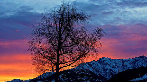 Sunrise, Light, Tree, Mountains, Nature, Morning, Sky