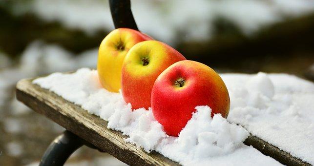 Apple, Snow, Winter, Fruit, Healthy, Snowed In, Garden