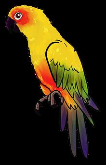 Bird, Animal, Birds, Nature, Feather, Parrot, Yellow