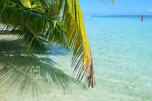 Bora Bora, Tahiti, Beach, Sea, Beach Sand