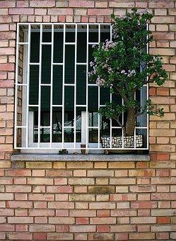 Barcelona, Spain, Brick Wall, Window, Jade Plant, Brick