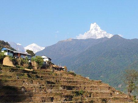 Nepal, Carriage Fu Chu, Play Lofts, Country