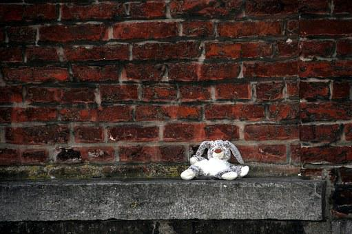 Teddy Bear, Wall, Toy, Rabbit, Only, Chair, Solitaire
