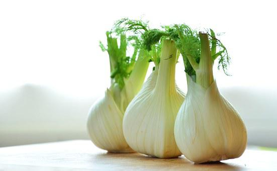 Fennel, Vegetables, Fennel Bulb, Food, Healthy, Frisch