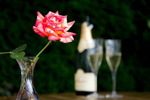 Aperitif, Pink, Champagne, Glasses, Table, Bottle