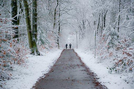Winter, Bike Path, Kids, Biking, School, Bike, Nature