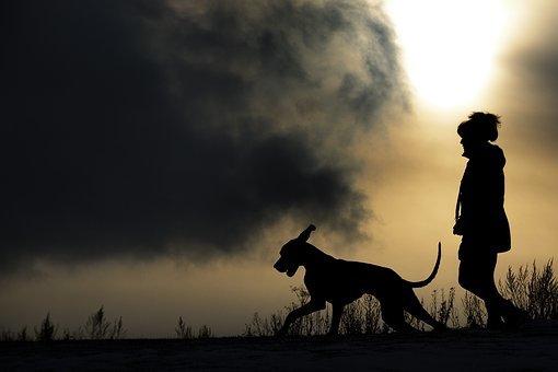 Silhouette, Man And Dog, Great Dane