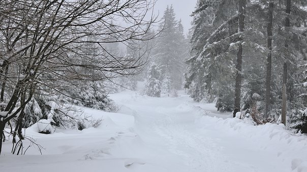 Way, Landscape, Winter, Trail, Snow, Blizzard