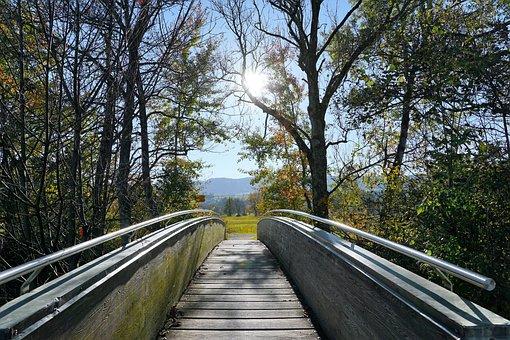 Bridge, Greifensee, Zurich, Canton, Switzerland, Water