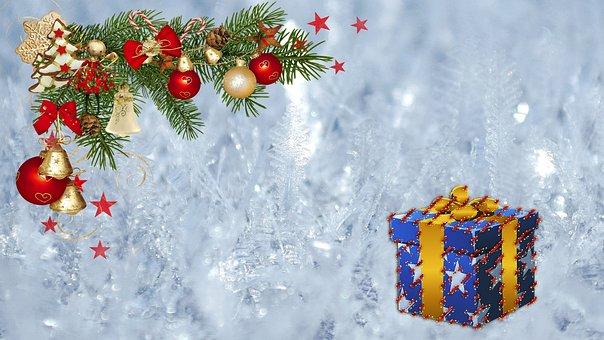 Christmas, Gift, Pine