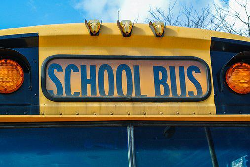 Bus, Usa, School, Colors, Vehicle, Collective, Buses