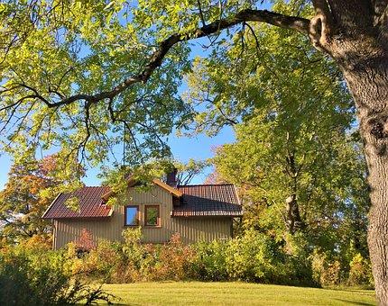 Tree, House, Nature, Autumn, Landscapes, Villa