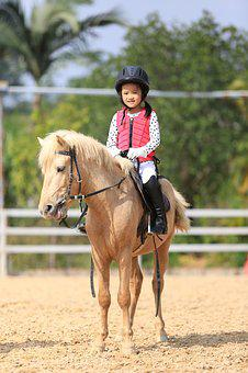 Child, Equestrian, Pony Horse