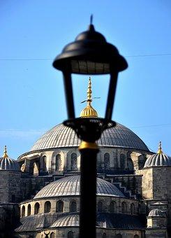 Bruel, Istanbul, Sultanahmet, Seagull