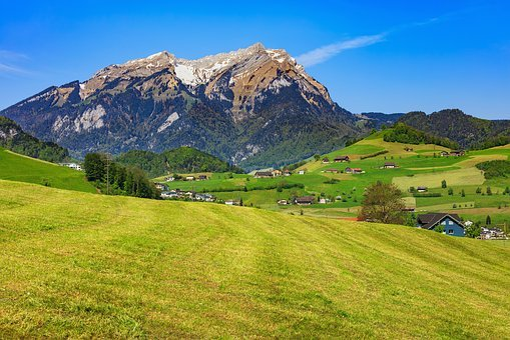 Stanserhorn, Pilatus, Springtime, Spring, Meadow, Grass