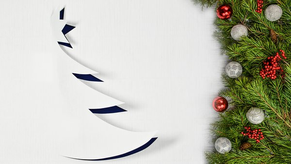 Christmas, Borders, Background, Tree, Branch