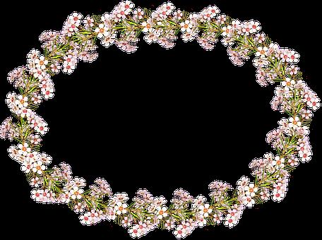 Frame, Border, Wax Flowers, Floral