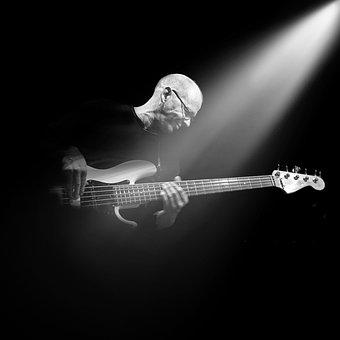 Guitar, Instrument, Music, Musician, Concert, Bass