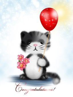Greeting Card, Kitten, Flower, Cute, Romance, Love