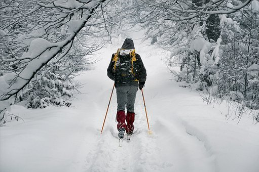 March, Winter, Way, Wandering, Tracking, Snow, Cold