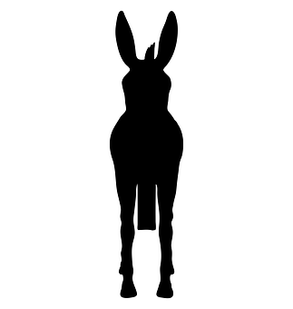 Donkey, Animal, Silhouette, Farm, Nature, Wild, Mammal