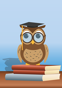 Read Owl, Book, Owl, Glasses, Read, Conclusion, Books