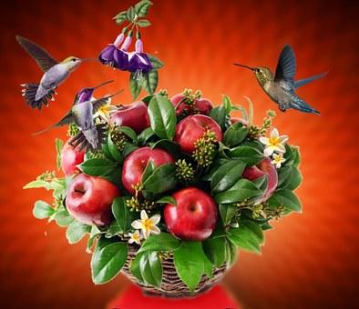 Bird, Birdie, Nature, Tropical Birds, Fly, Flower