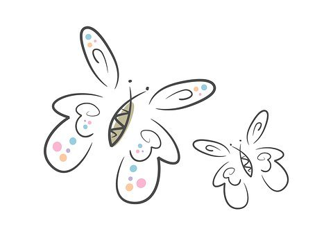 Butterflies, Two, Insect, Flying, Wing, Animal