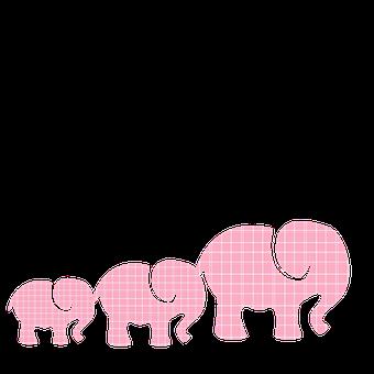 Pink Elephants, Baby Elephants, Elephants, Plaid