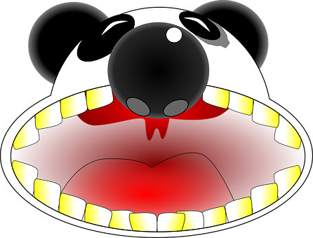 Panda, Mouth, Teeth, Angry, Shout, Loud, Animal, Smile
