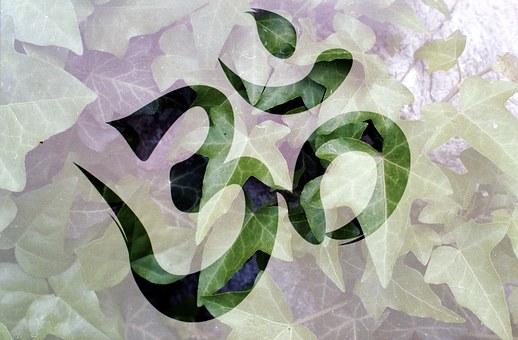 Om, Meditation, Plant, Spiritual, Meditating, Yoga