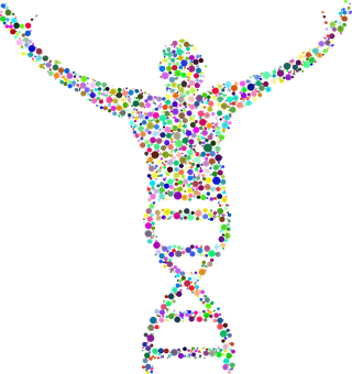 Dna, Deoxyribonucleic Acid, People, Boy, Excited, Human