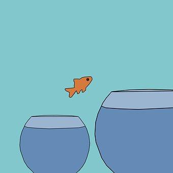 Keywords, Change, Fish, Individuality, Marketing