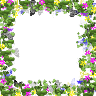 Picture Frame, Digital, Flowers, Butterflies, Frame