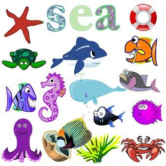Sea, Fish, Animals, Swim, Collage, Sheet, Kids