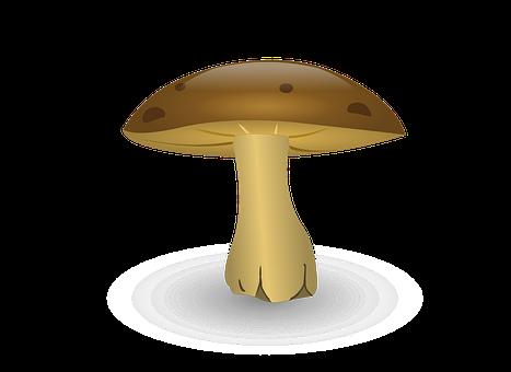 Mushroom, Cartoon, Fungus, Vegetable, Organic, Cute