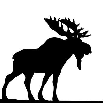 Moose, Black, Silhouette, Wild, Animal, Deer, Nature