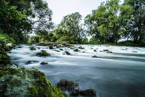 Forest, Waterfall, Nature, Landscape, Waterfalls, Water