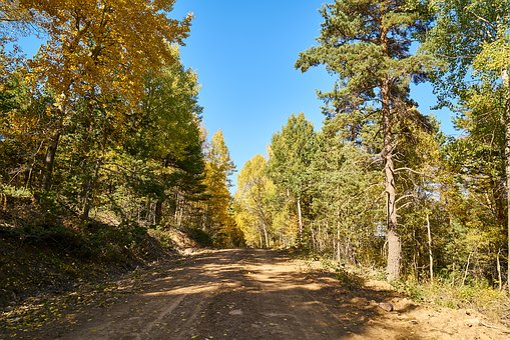 Mountains, Trees, Autumn, Nature, Mountain, Landscape