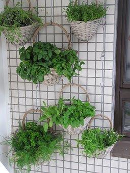 Balcony, Herbs, Verkikaalipuutarha, Vertical Planting