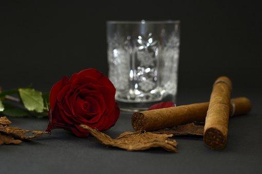 Rose, Red Rose, Cigar, Tobacco Leaves, Crystal Glass