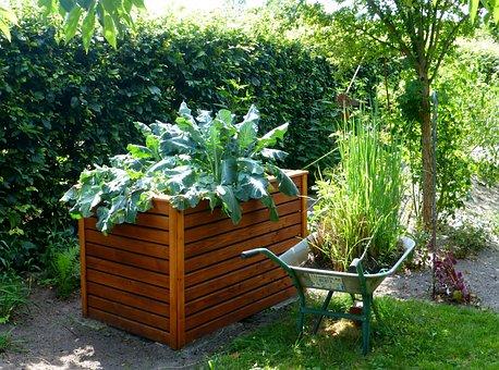 Garden, Raised Bed, Kohl, Gardening, Vegetables