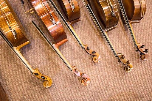 Wood, Classic, Wooden, Instrument, Violin, Sound, Cello