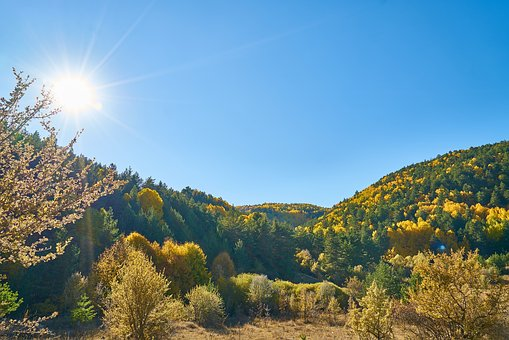 Mountains, Trees, Autumn, Nature, Mountain, Landscape