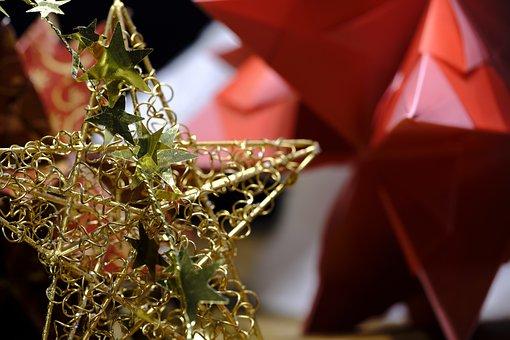 Christmas, Advent, Star, Poinsettia