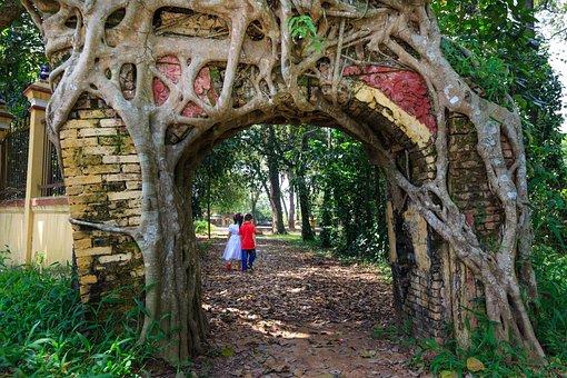 Tree, Door, Cling, Old, Temple, Art, Factory, Build