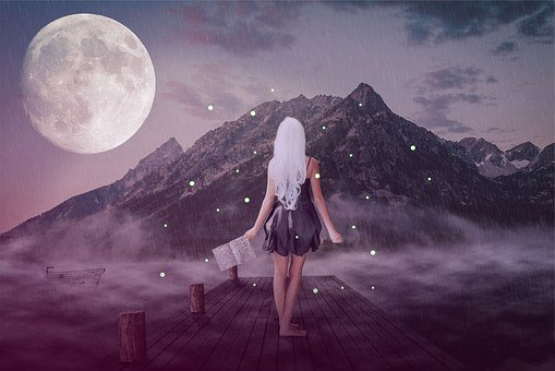 Woman, Girl, Young, Pretty, Nature, Web, Lake