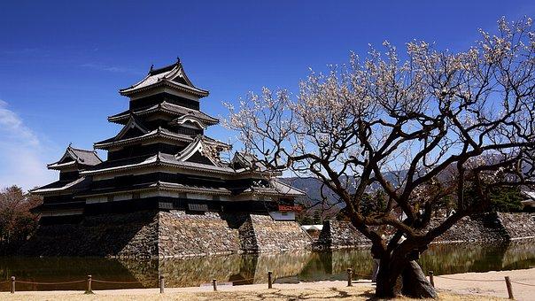 Matsumoto, Castle, Nagano, Japan, Japanese, Landmark