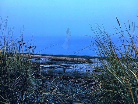 Ocean, Fog, Nature, Water, Mist, Beach, Coast, Foggy